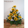 Centro de Flores Creta