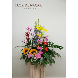 Centro de Flor y Planta Duna