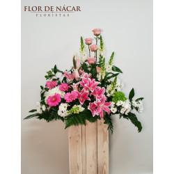 Centro de Flores Tramontana